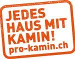 pro-kamin